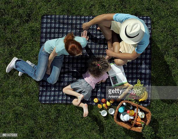 Family having a picnic on grass