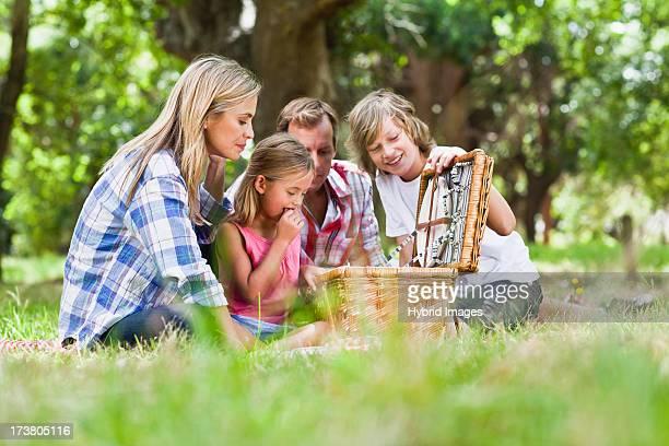 Family having picnic in park