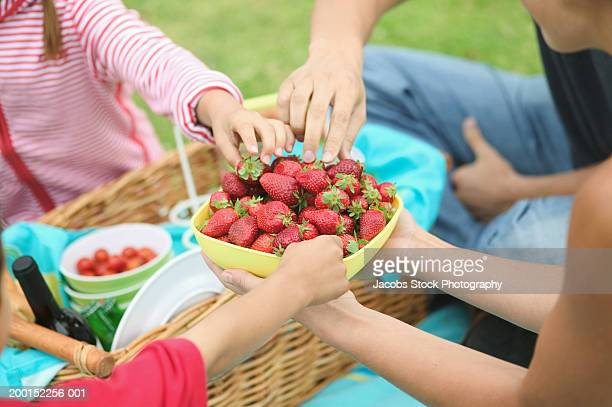Family having picnic, selecting strawberries from bowl, close-up