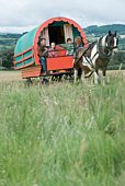 Family in horse-drawn caravan wagon in rural Ireland