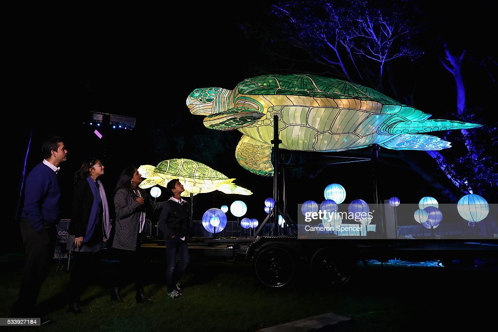 A family look at marine turtle light sculptures during a media preview of Vivid Sydney illuminated displays at Taronga Zoo on May 24, 2016 in Sydney, Australia. Vivid is lighting up at Taronga Zoo for the first time with ten giant animal sculptures representing critical species the zoo is committed to protecting. Held annually, Vivid Sydney is the world's largest festival of light, music and ideas running for 23 days.