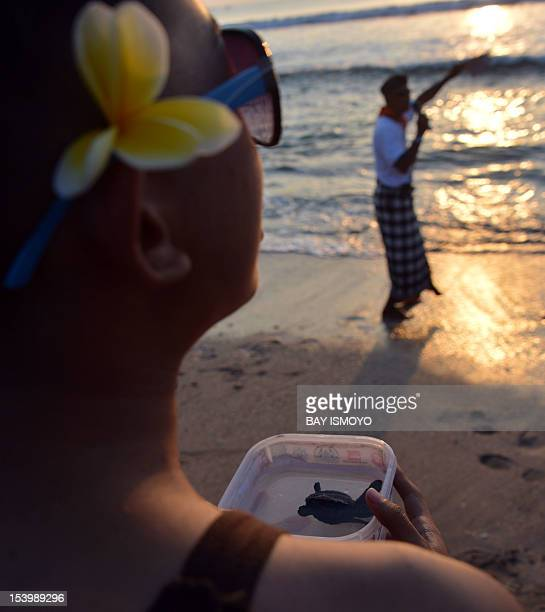 A family member of victims of the October 12 2002 Bali bombings holds a tub containing one of 202 baby sea turtles prior to their release into the...