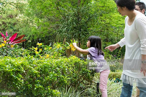 Family Observing Plants at Hong Kong Park, China