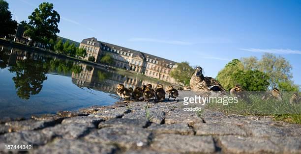 Familie sitzt im park, Neues Schloss, Stuttgart