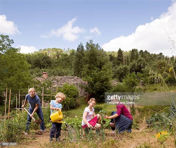 family of four gardening