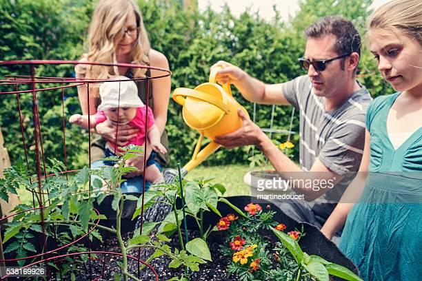 Familia de cuatro jardinería juntos con bebé al aire libre.