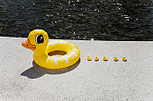 A family of inflatable ducks