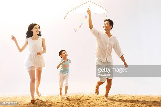 Family on beach playing kite