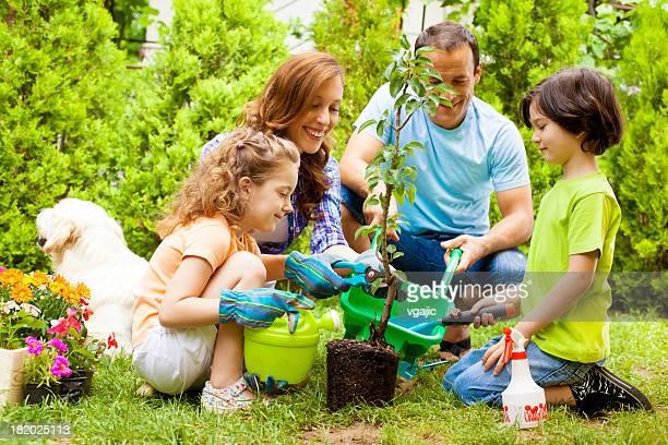 Familie Pflanzen Baum zusammen.