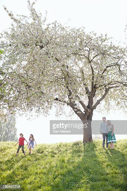 Family playing under tree in park