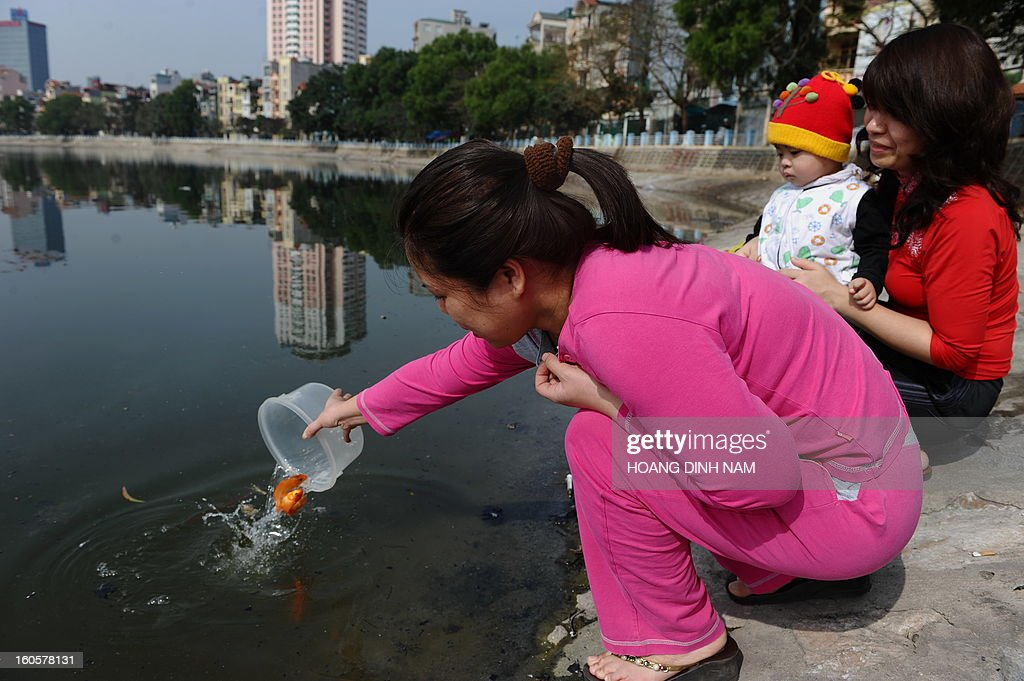 A family releases live red carp into a lake to mark 'Kitchen God Day', part of Lunar New Year or Tet celebrations by Vietnamese, in dowtown Hanoi on February 3, 2013. Vietnamese believe that Tet marks the time when the Kitchen God reports on their family to the Jade Emperor on the 23rd day of the 12th lunar month, meaning a week before Tet. On that day families usually burn gold leaf paper and offer live carp for him to ride. AFP PHOTO / HOANG DINH Nam