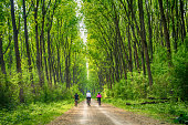 Family rides a bike through the forest.