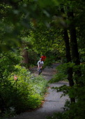 A family rides along a bike path at Fullersburg Woods Forest Preserve in Oak Brook Illinois on September 21 2012 The summer's drought is having...