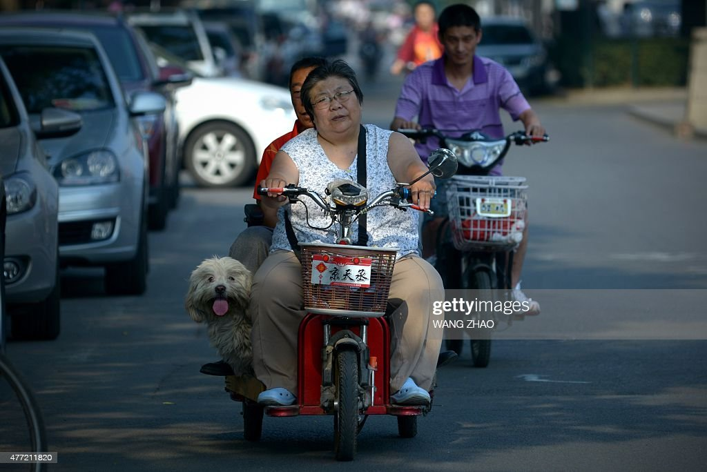 A family rides on an electric bicycle with a dog along a street in Beijing on June 15, 2015.
