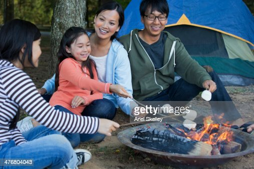 Family Roasting Marshmallows At Campsite Stock Photo ...