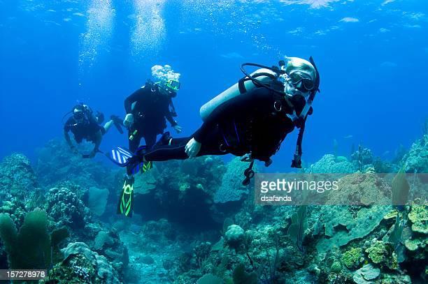Famille, plongée sous-marine
