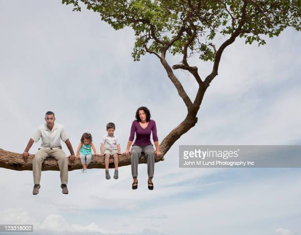 Family sitting on tree limb together
