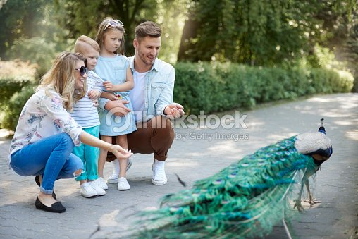 Family spending day at the zoo : Stock Photo