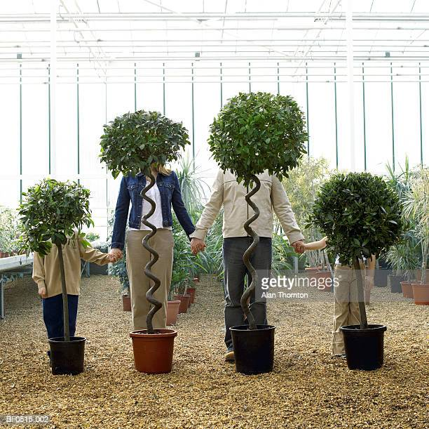 Family standing behind trees in greenhouse, holding hands