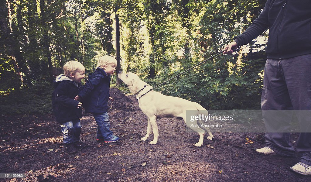 Family taking the dog for a walk : Stock Photo