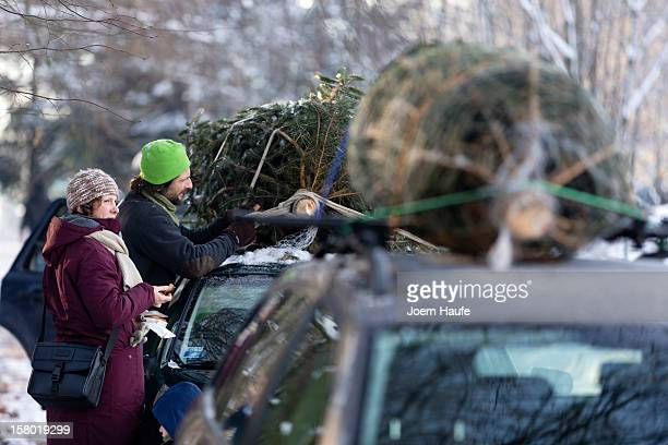 A family tie a Christmas tree they had chosen and cut down themselves to the roof of their car at a forest on December 8 2012 in Fischbach Germany...