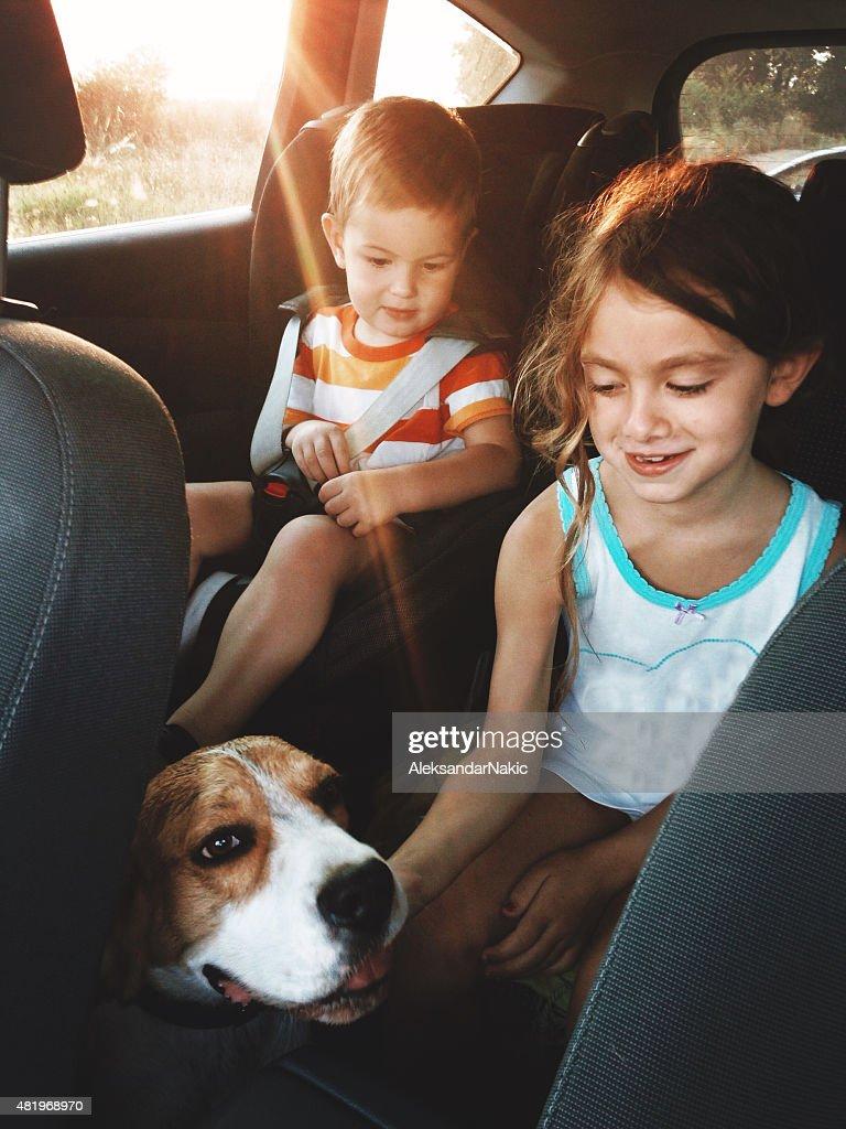 Family trip : Stock Photo