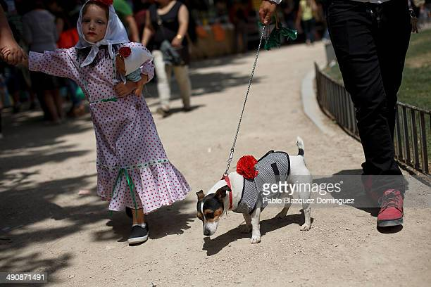 A family walk with their dog dressed as 'chulapo' during the San Isidro festivities at Pradera de San Isidro park on May 15 2014 in Madrid Spain...