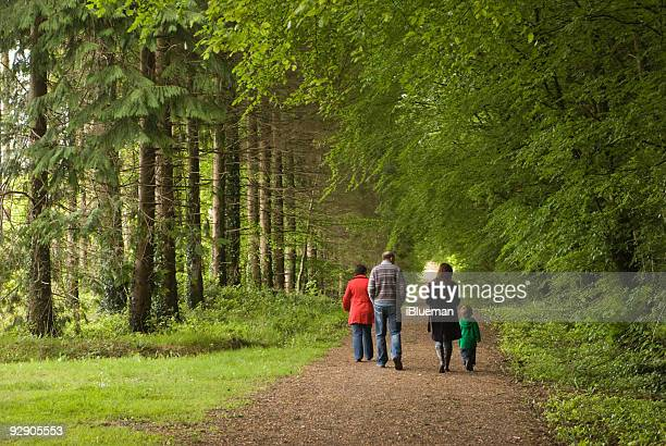 Family walking along forrest path