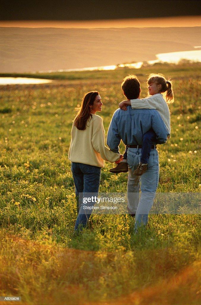 Family walking in field, man carrying girl (4-6), rear view : Stock Photo