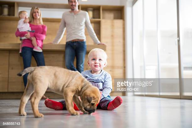 Family watching male toddler with puppy on dining room floor