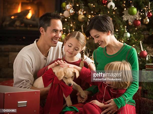 Família com um novo cachorrinho no Natal de manhã