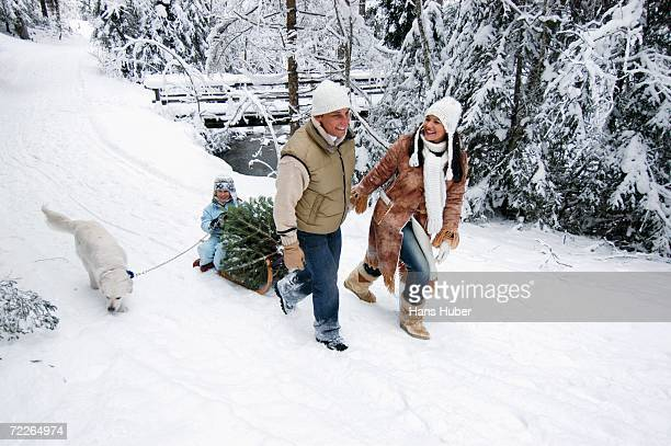 Family with dog and Christmas tree on sledge, smiling