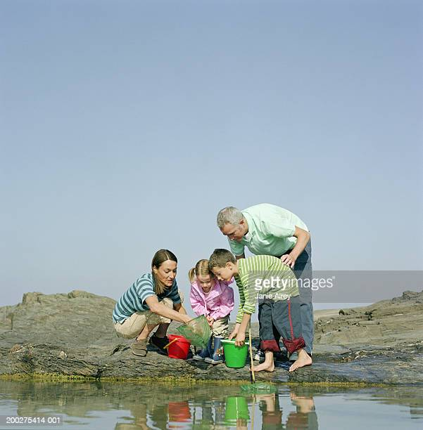 Family with fishing nets and buckets by rock pool
