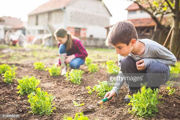 Famiglia giardino