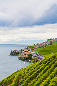 Famous Lavaux region, Lake Geneva, Switzerland