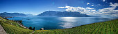 Famouse vineyards in Montreux against Geneva lake. Switzerland