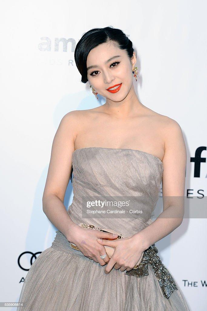 Fan Bing Bing attends the '2010 amfAR's Cinema Against AIDS' Gala - Arrivals