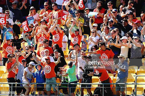 A fan catches a six during the 2015 ICC Cricket World Cup match between New Zealand and the West Indies at Wellington Regional Stadium on March 21...
