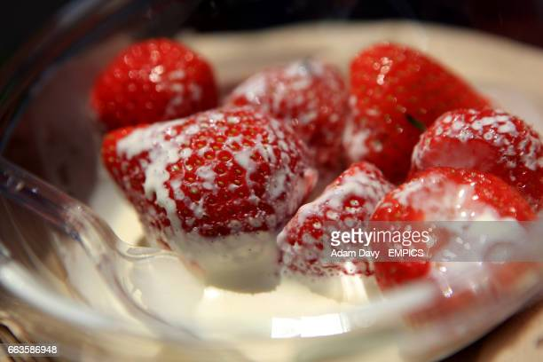 A fan eats some strawberries and cream during the Wimbledon Championships at the All England Lawn Tennis and Croquet Club Wimbledon London