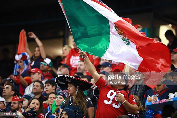 A fan of Houston Texans waves a mexican flag during the NFL football game between Houston Texans and Oakland Raiders at Azteca Stadium on November 21...