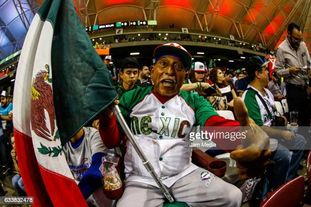 A fan of Mexico cheers his team during a game between Aguilas de Mexicali of Mexico and Aguilas de Zulia of Venezuela in the Baseball Caribbean...