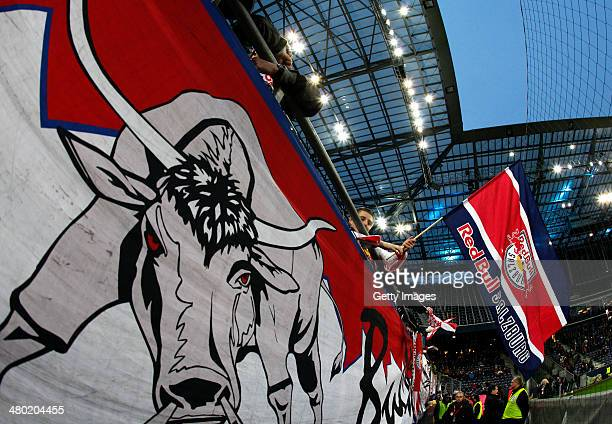 A fan of Salzburg waves a flag after the tipp3 Bundesliga match between Red Bull Salzburg and SC Wiener Neustadt at Red Bull Arena on March 23 2014...