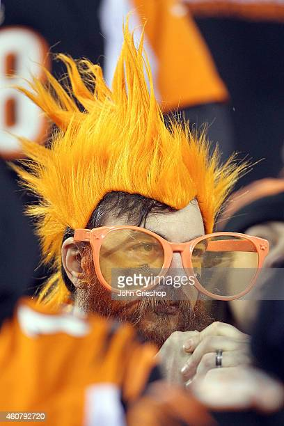 A fan of the Cincinnati Bengals watches as they take on the Denver Broncos during the third quarter at Paul Brown Stadium on December 22 2014 in...