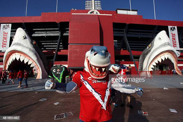 A fan wearing a shark costume poses for a photo prior a 1st round match between Veracruz and Chivas as part of the Apertura 2015 Liga MX at Luis...