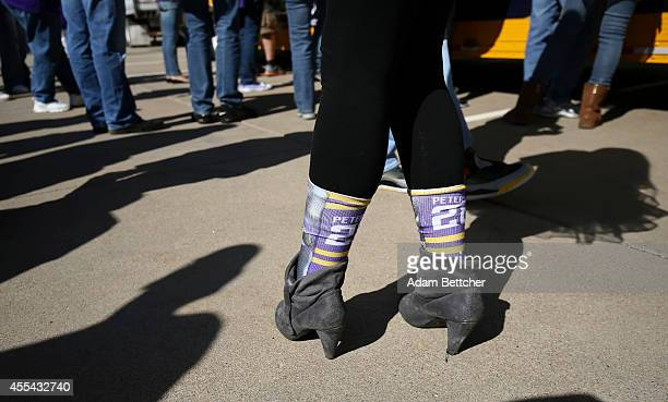 A fan wears Adrian Peterson of the Minnesota Vikings socks before the game against the New England Patriots at TCF Bank Stadium on September 14 2014...