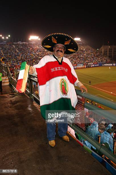 fan noise maker. a fan with sombrero poncho and noise maker cheers for mexico as his team plays