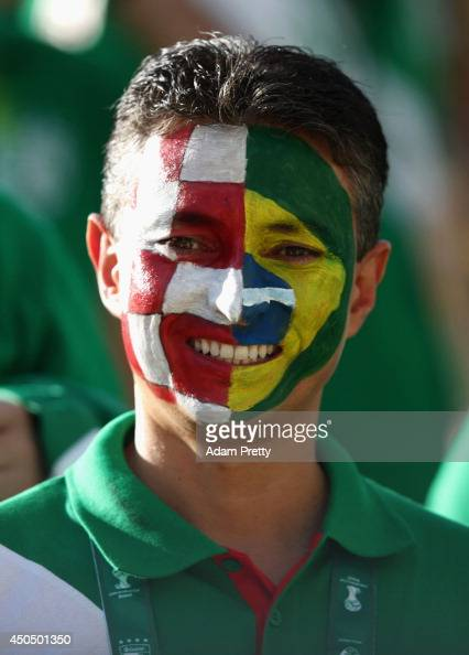 A fan with face paint depicting the Croatia and Brazil flags smiles during the Opening Ceremony of the 2014 FIFA World Cup Brazil prior to the Group...