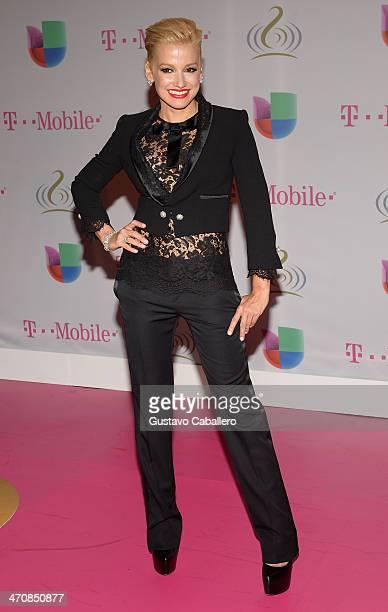 Fanny Lu attends Premio Lo Nuestro a la Musica Latina 2014 at American Airlines Arena on February 20 2014 in Miami Florida