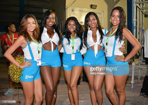 Fans cheer their team during the Ninth Match of the Cricket Caribbean Premier League between Trinidad and Tobago Red Steel v Jamaica Tallawahs at...