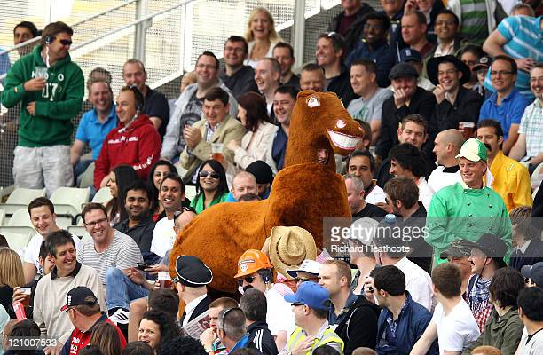 Fans dressed in a pantomime horse costume enteertain the crowd during day four of the 3rd npower Test at Edgbaston on August 13 2011 in Birmingham...